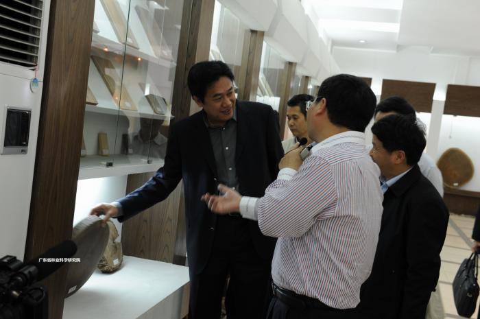 邓海光副省长视察w88手机网页版登录木材标本建设情况